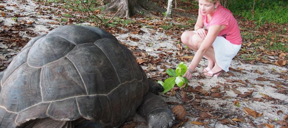 Praslin Island – Half day tour of Valle-de-Mai Nature Reserve
