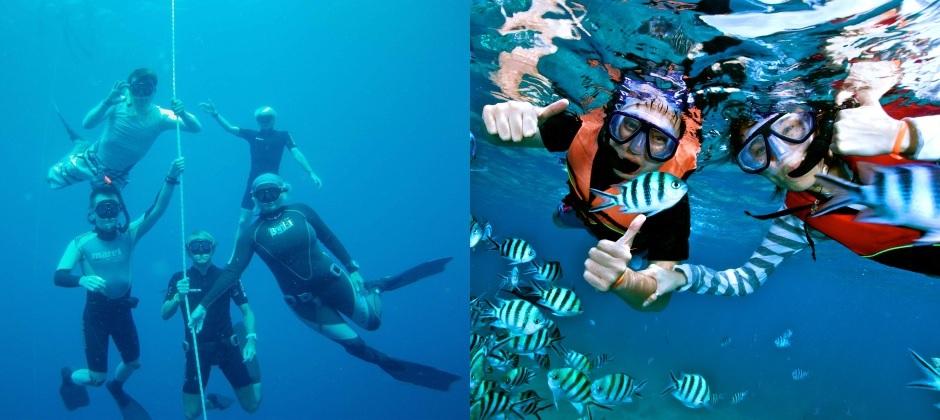 Koh Samui: Freediving